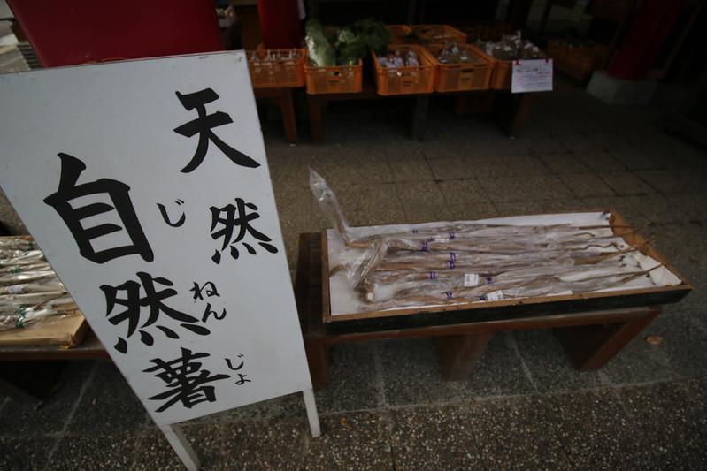 20141124-曽爾高原-0335.jpg