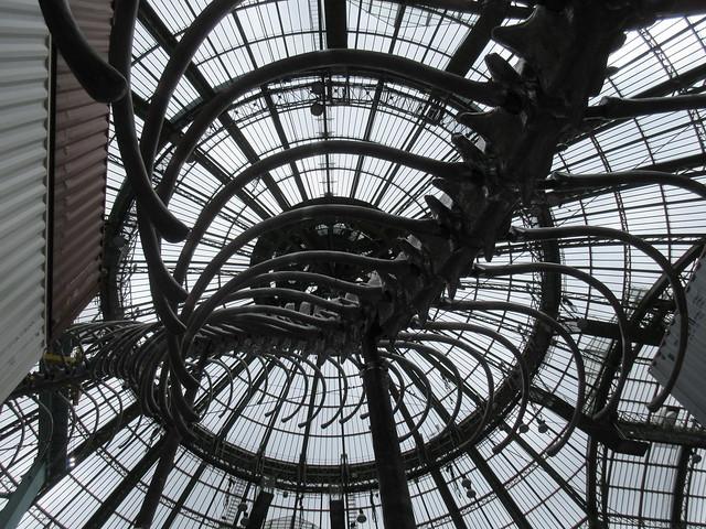 Monumenta - Grand Palais - Huang Yong Ping