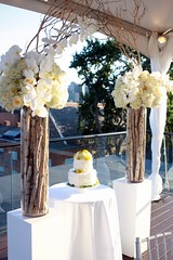 Pedestals at a wedding