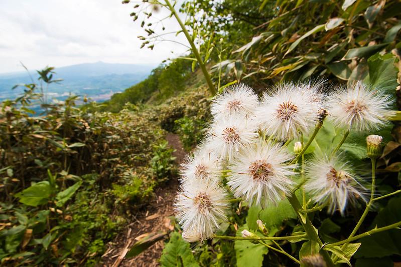 20150614-北海道羊蹄山(2日目)-0221.jpg