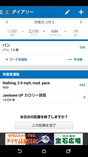 MyFitnessPal Diary Daily Detail RunKeeper Data