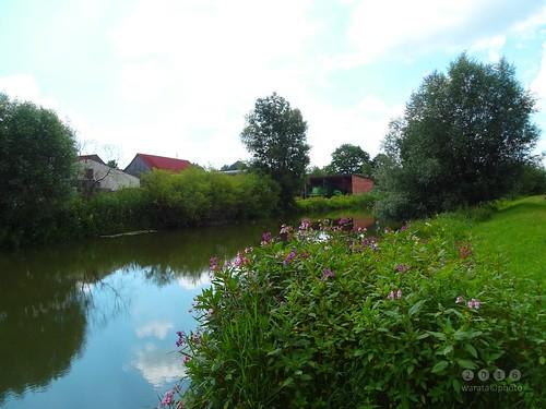 Günz -der Fluss > bei Ellzee in  Bayerisch Schwaben - Günz-la rivière> à Ellzee dans la Souabe bavaroise