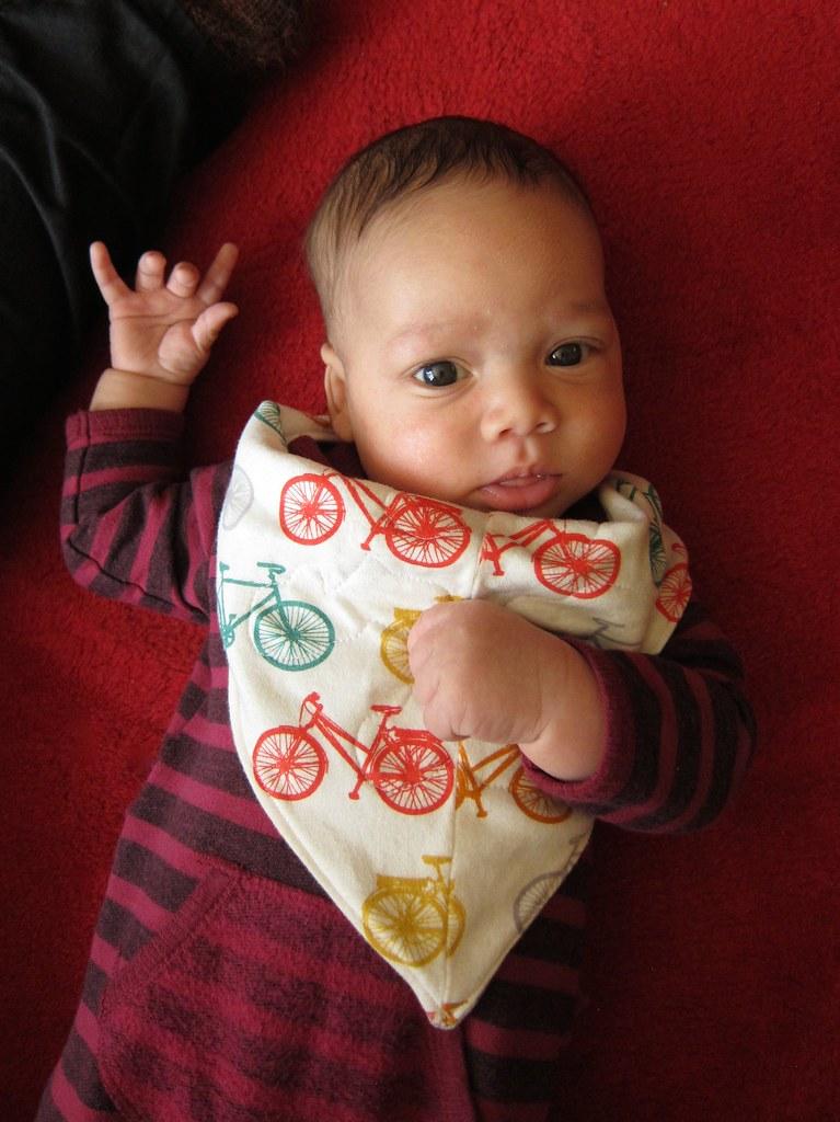 Reversible appliquéd bicycle-print handkerchief bib