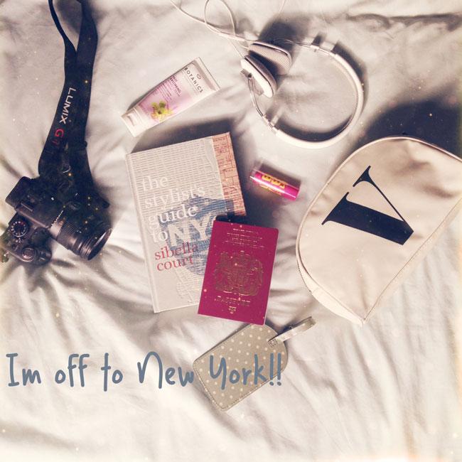 new-york-travel-tourist-blo