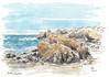 monterey peninsula coastline