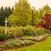 Wharton Garden by De' Fiddler