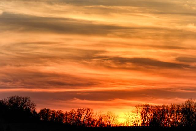 Sunset_48344_.jpg