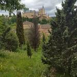 2016 Mayo Curso Segovia