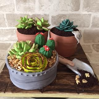 Cactus Planters by Corry Pambuko of Corry's Handmade Home Baking