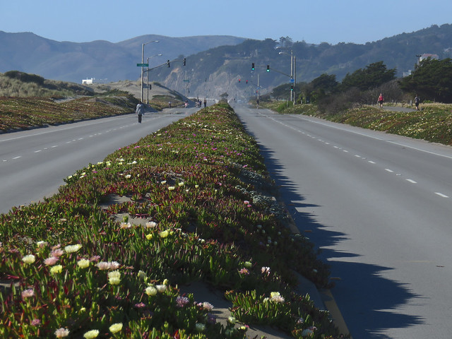 ice plants divider on Great Highway, closed due to windblown sand.  Ocean Beach, San Francisco.  April 15, 2015