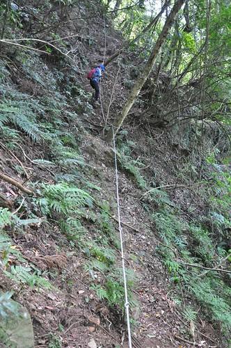 加里山步道-鐵道段