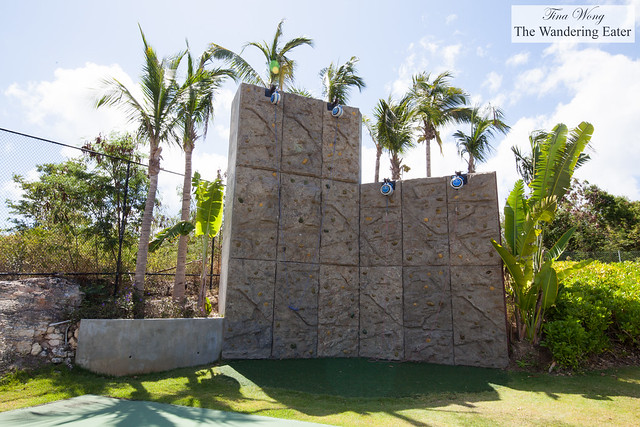 Rock climbing wall on the propety