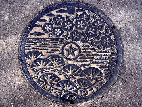 Tanabe Wakayama, manhole cover 3 (和歌山県田辺市のマンホール3)