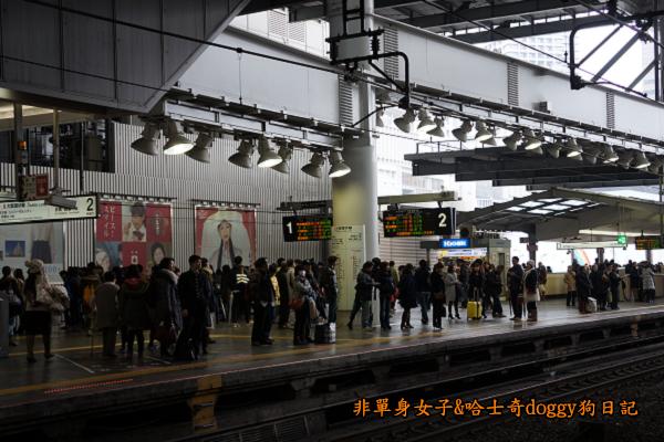 日本JR地鐵電車便當15