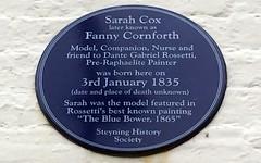 Photo of Fanny Cornforth blue plaque