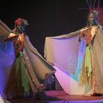 """Mezinárodní festival """"Keltská noc"""", 2011"""