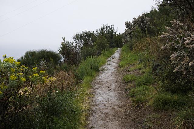8. Corniglia to Manarola