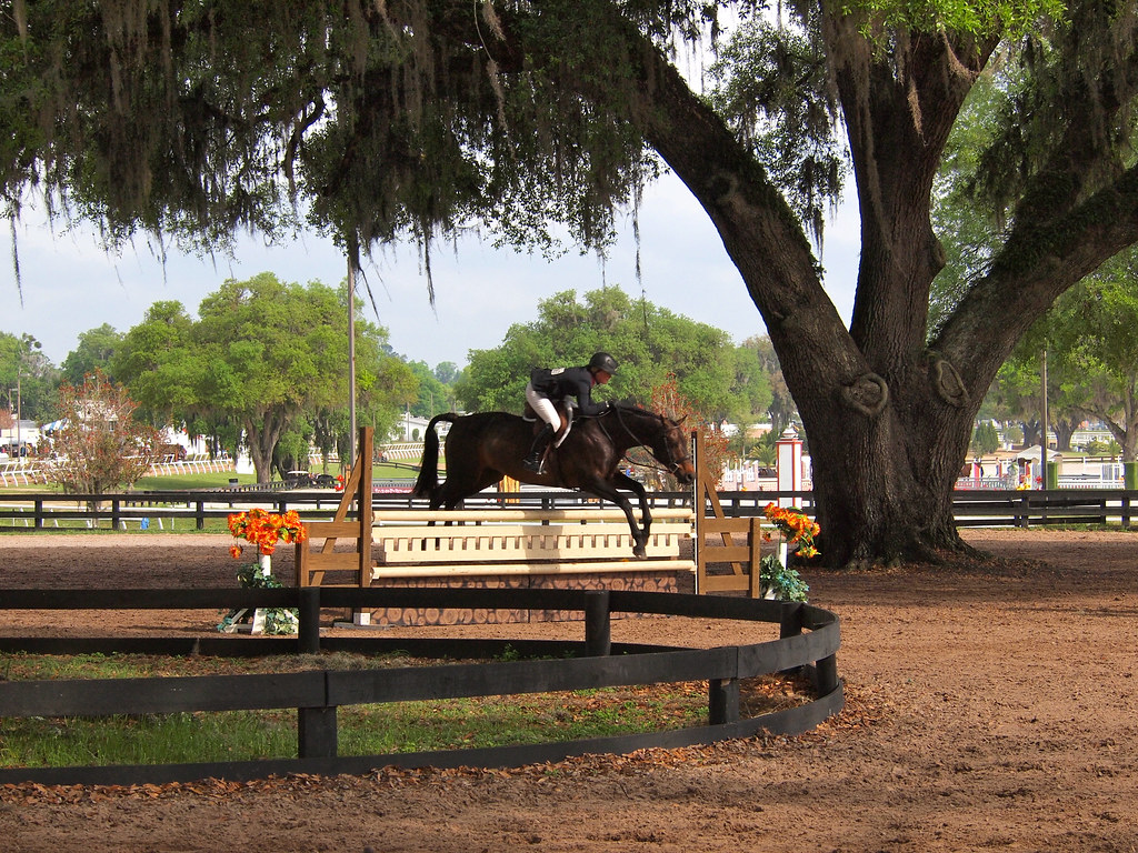 HITS horse show in Ocala, Florida