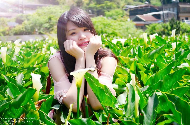 陽海 (27)