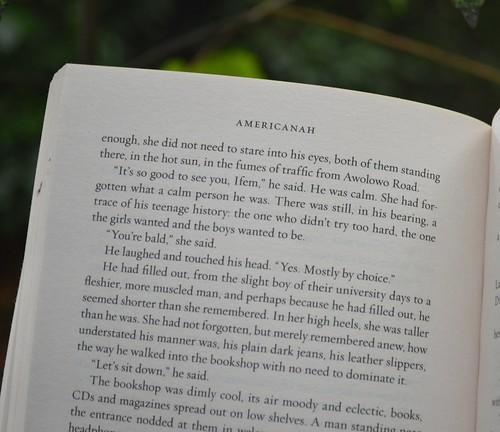 p. 428 - Americanah