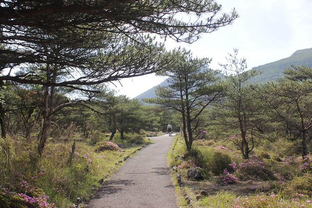 20140601-韓国岳-0024.jpg