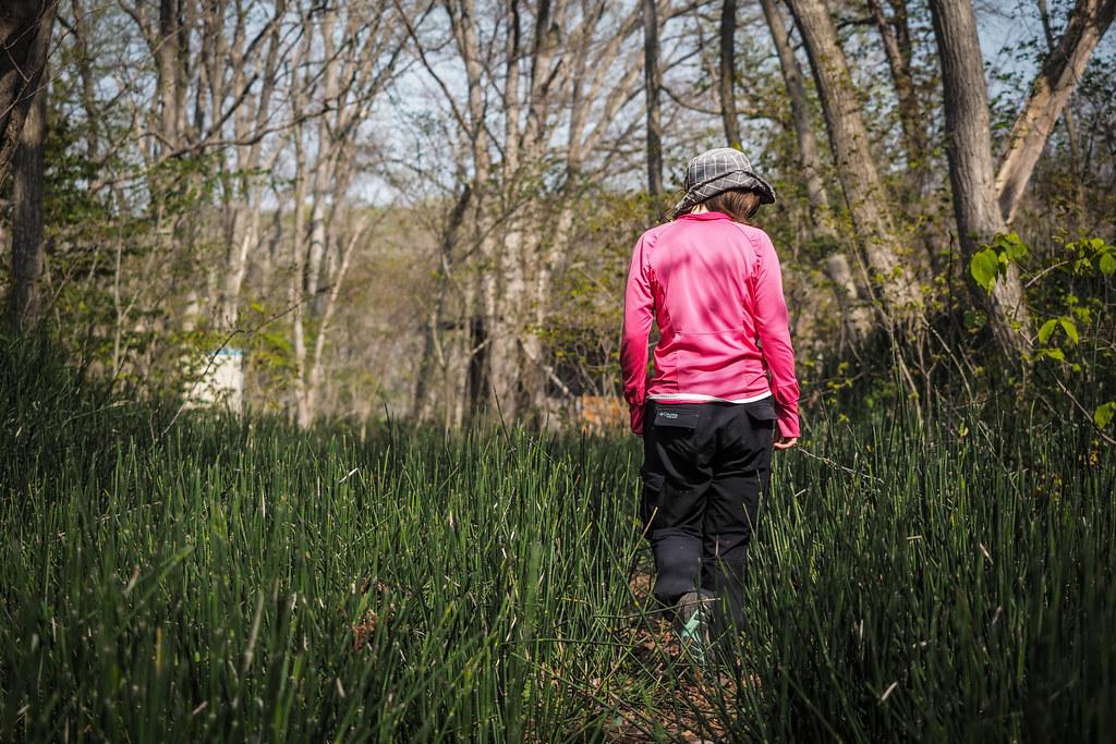 Wandering around early spring growth in Onuma Park, Hokkaido, Japan