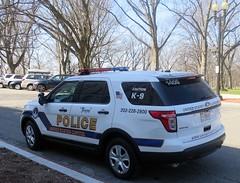 Ziggy - United States Capitol Police K-9