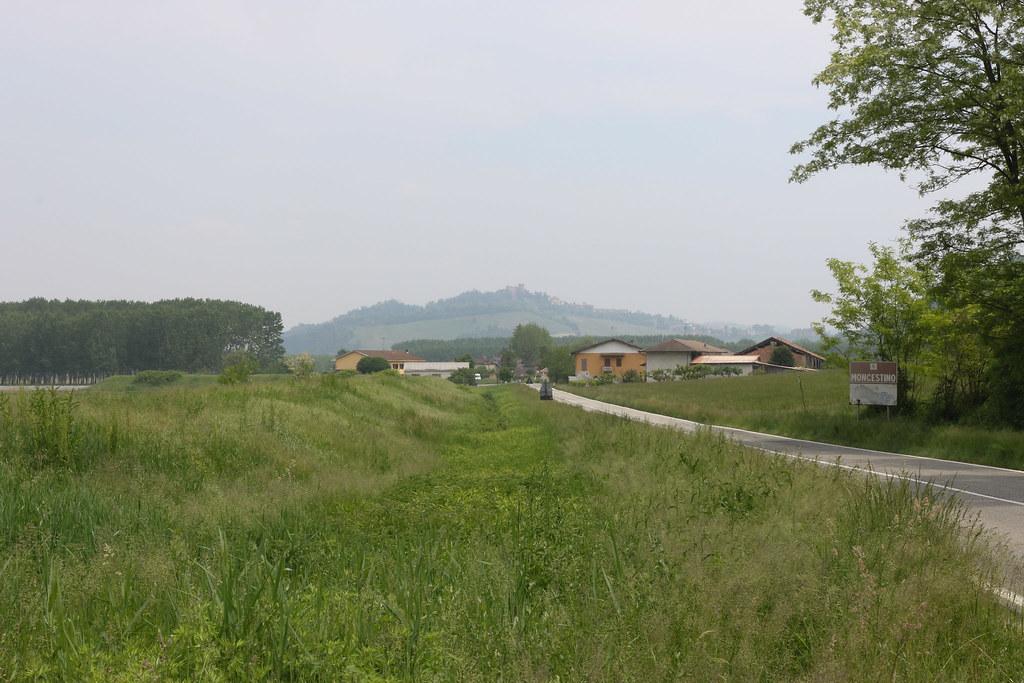 OJ6A2046.jpg