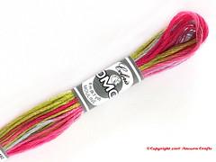 DMC 4502 Coloris