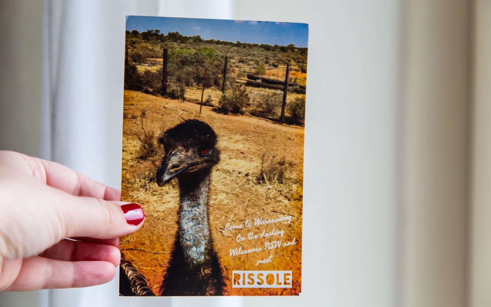 Postkort billeder-2470