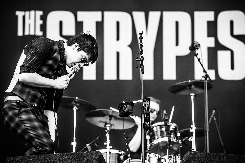 The Strypes @ Rock Werchter 2016 (Jan Van den Bulck)