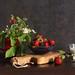 Woodland & Garden Strawberries by panga_ua