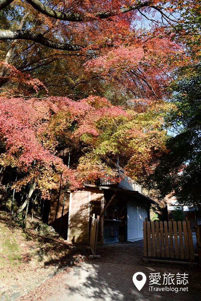 京都赏枫景点 高雄西明寺 31
