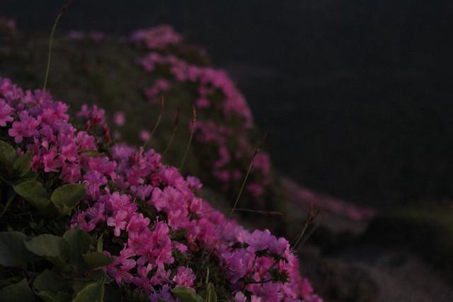 20140601-高千穂峰-0072.jpg