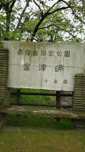 18_富津公園の桜_1