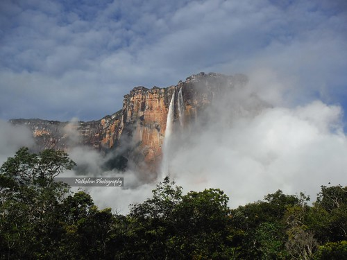 southamerica waterfall venezuela adventure jungle angelfalls canaima mikekline michaelkline tallestintheworld islaraton notkalvin ratislandmorning notkalvinphotography