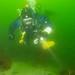 Diver in spring algal bloom by Størker