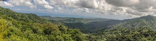 tower río forest puerto grande san juan el rico national caribbean toro yunque yokahú