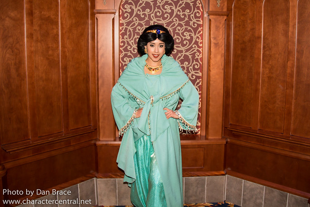 Meeting the Princesses in Fantasyland