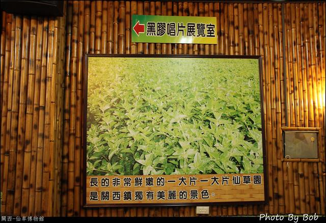 關西-仙草博物館23