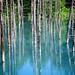 Hokkaido Blue Pond by eipangan