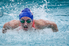 freestyle swimming(0.0), individual sports(1.0), open water swimming(1.0), swimming(1.0), sports(1.0), recreation(1.0), outdoor recreation(1.0), leisure(1.0), azure(1.0), swimmer(1.0), water sport(1.0), medley swimming(1.0), breaststroke(1.0), butterfly stroke(1.0),
