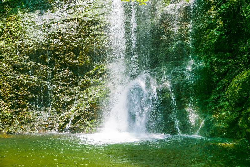 箕面の滝20160504_19