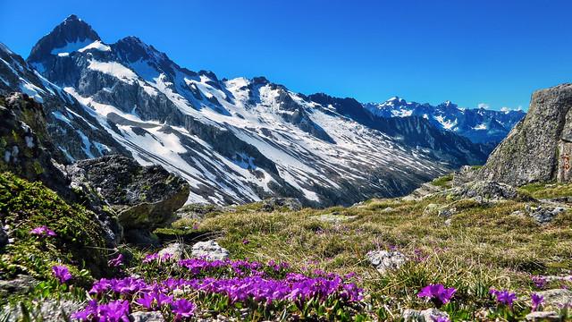 Rienzenstock (2962m) seen from the Fellilücke (2478m) - Uri - Schweiz [#Explored 359]