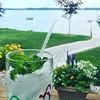 #gardening #neverends #someonehastotrimthemint #mojitotime #summer #frenchriviera #crystallakemi