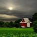 Octagon Barn  # 21 by Mike Linnihan