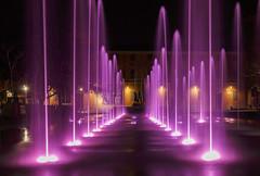 La fontana del Teatro Valli
