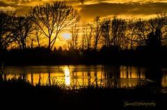 amazing golden sunset 2