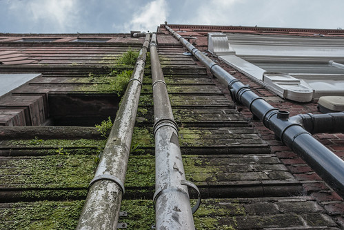 Norwich [Vertical Gardens] - 13