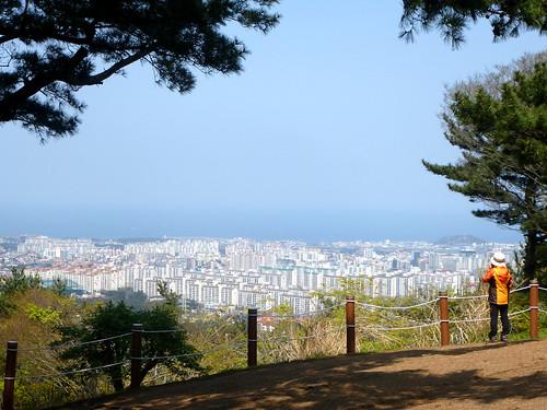 Co-Jejudo-Jeju 2-Halla Arboretum (31)